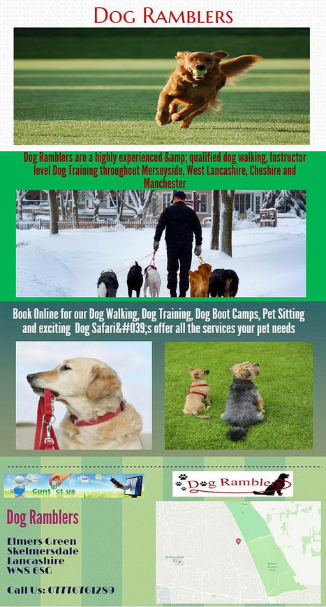 Dog-ramblers | Live Streaming Video | Scoop.it