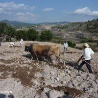 l'agro-écologie est une solution face à la crise alimentaire | vidéo | Economie Responsable et Consommation Collaborative | Scoop.it