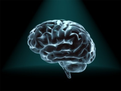 Scientists to bypass brain damage by re-encoding memories | Social Neuroscience Advances | Scoop.it