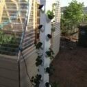 Vertical Hydroponic Garden: How to Build Your Own - Hydroponics is Cool - Home Hydroponics Projects | Vertical Farm - Food Factory | Scoop.it