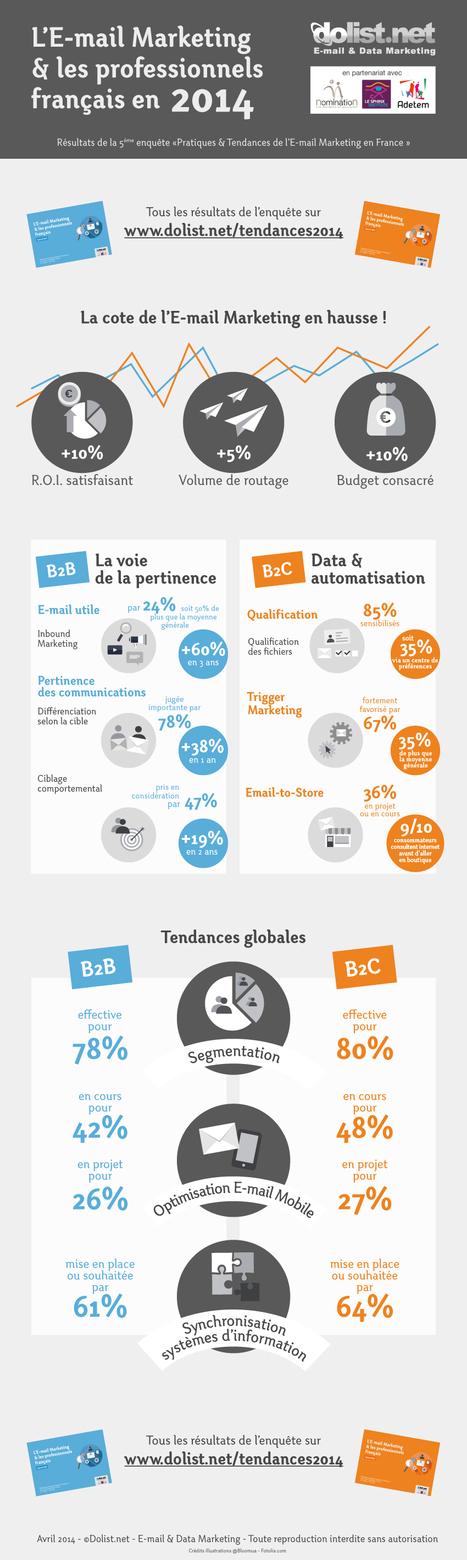 Emailing | L'email marketing et les professionnels français en 2014 (infographie Dolist) | Webmarketing infographics - La French Touch digitale en images | Scoop.it