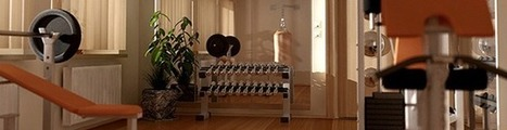 Why Own A Home Gym? - Lifespan Fitness Blog | Wellness Life | Scoop.it