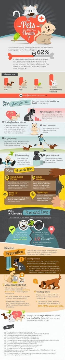 [INFOGRAPHIC] Are Pets Good For Health | INFOGRAPHICS | Scoop.it