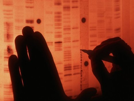 Cancer trials aim to shore up 'precision medicine's' base of evidence | Changing pharma | Scoop.it