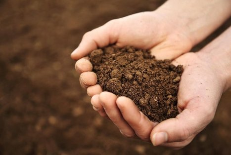Soil Has a Microbiome, Too | Food Culture Community | Scoop.it