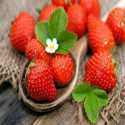 NoisyList | Essential Beauty Foods for Women | Lifestyle and Health tips | Scoop.it