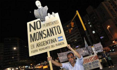Monsanto en Argentina: Otra prueba del globalismo K   Alimentos Transgenicos y Consumo Responsable   Scoop.it