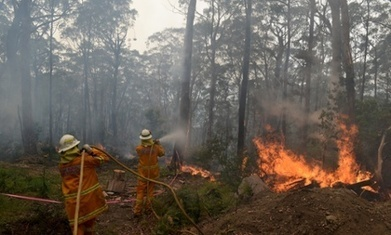 Missing logic of Australian prime minister's denial of climate change link to bushfires | Sustain Our Earth | Scoop.it