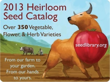 2013 Heirloom Seed Catalog Now Online! | Agricultural Biodiversity | Scoop.it