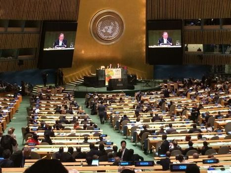 Analyzing Outcomes from the UN Climate Summit | World Resources Institute | Sustain Our Earth | Scoop.it