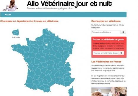 Urgence vétérinaire | Yooblog – Le blog officiel de l'agence Yoolight | Mikan : le soin animal | Scoop.it
