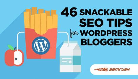 46 Snackable SEO Tips for WordPress Bloggers | FujiX | Scoop.it