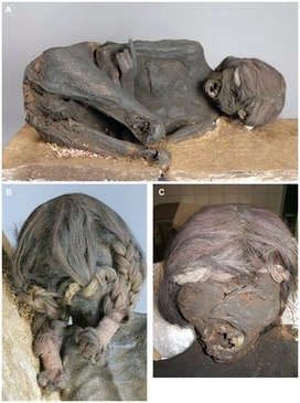 Unknown Mummy Examined in Germany - Archaeology Magazine | Historical Updates | Scoop.it