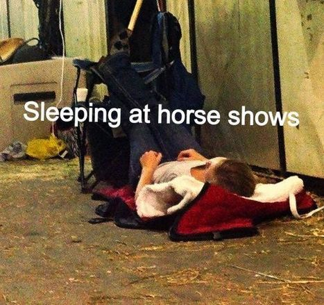Sleeping at horse shows | Horses and Equine Related Info | Scoop.it