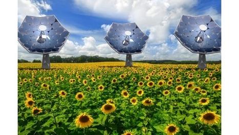 OPENJOR.GE: IBM Revoluciona la Fotovoltaica | Saber mas en tecnología, compartir es la via | Scoop.it