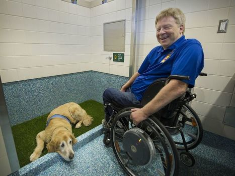 Vancouver Airport opens 'pet-relief' area for service dogs that gotta go   Accessible Travel   Scoop.it