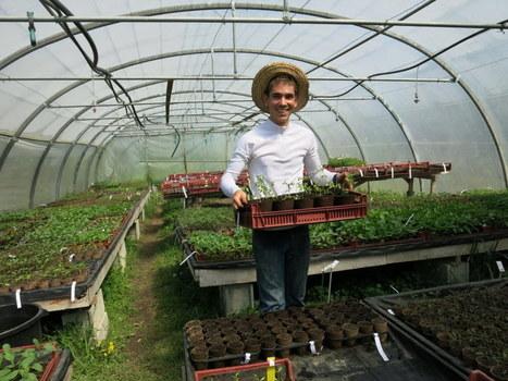 Jardin'Envie propose des variétés paysannes | De Natura Rerum | Scoop.it
