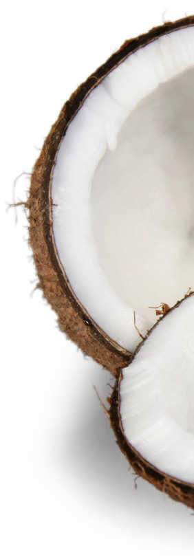 Raw Organic Virgin Cold Pressed Coconut Oil from Detox Trading | Suppliers of Cheap Organic Superfoods | Super Foods | Scoop.it