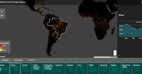 Free Technology for Teachers: Global Forest Change Explorer - Trends in Deforestation | Edtech PK-12 | Scoop.it