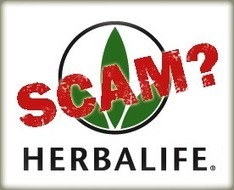 Truth Exposed On The Herbalife Scam   Nathan Argenta   Scoop.it