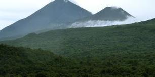 Une expérience de valorisation de fruits sauvages au Congo (rediffusion) - RFI   La parole de l'arbre   Scoop.it