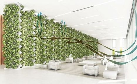 CASE develops air purification system based on hydroponic plants ... | Vertical Farm - Food Factory | Scoop.it