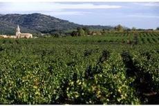 1954, leçon de marketing : pas d'Ovni à Châteauneuf-du-Pape ! Via Réussir Vigne | Vin, blogs, réseaux sociaux, partage, communauté Vinocamp France | Scoop.it