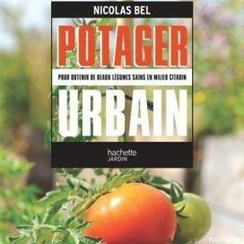 10 bonnes raisons de cultiver des fruits et des légumes en ville | Plusieurs idées pour la gestion d'une ville comme Namur | Scoop.it
