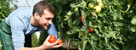 Le bio présente de nombreux avantages économiques | Action publique pour le développement durable des territoires et de l'agriculture | Scoop.it