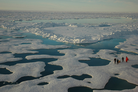 """Sea Ice Still Declining, Despite Antarctica's Gains 