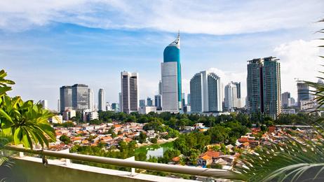 La société Gaussin Manugistique s'offre l'Indonési | Export, International, B2B, Business development | Scoop.it