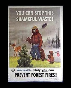 Smokey the Bear posters, 1950s - Found in Mom's Basement | Vintage Living Today For A Future Tomorrow | Scoop.it