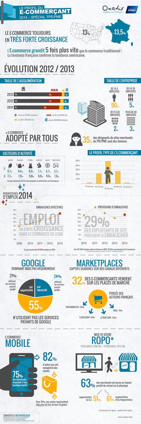 Infographie e-commerce : Qui est le e-marchand en 2014 ? | Le Blog Iziflux, solution d'export catalogues produits | Emarketing | Scoop.it