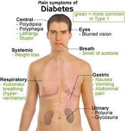 Understanding Diabetic Symptoms | TheraScope | Health | Scoop.it