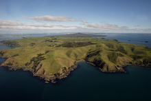 Urban Maori granted farming opportunities - New Zealand Herald   Urban Food Security   Scoop.it