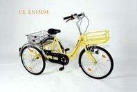 Flyhorse Electric Tricycles,Electric Trikes,Adult Electric Trikes | DIY electric bikes | Scoop.it