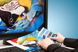 Graphic Designer Job Description: What You Need to Know - Udemy | Graphic design | Scoop.it