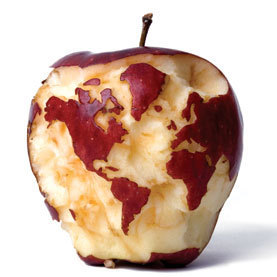Can We Feed the World and Sustain the Planet?: Scientific American | The Great Transition | Scoop.it