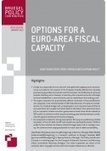 Bruegel - The Brussels-based think tank | Options for a Euro-area fiscal capacity | The European | Scoop.it