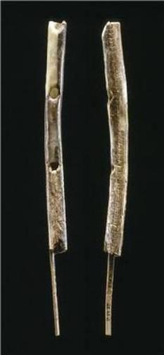 L'Homme moderne européen jouait de la flûte voici 42.500 ans   Aux origines   Scoop.it