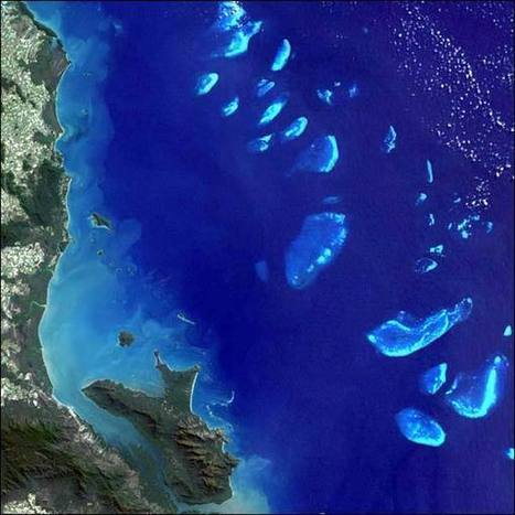 Great Barrier Reef: Facts, Location & Animals | Ecosystems | Scoop.it