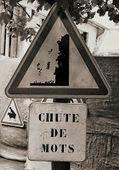 Une récidiste à l'oeuvre : 100 Mots pour une vie. | RoBot généalogie | Scoop.it