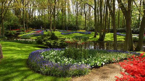 Best Community Gardens In Pittsburgh | jardins partagés | Scoop.it