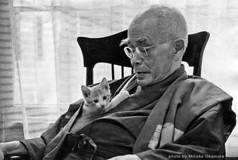 D.T. Suzuki on What Freedom Really Means and How Zen Can Help Us Cultivate Our Character | Interesting Reading | Scoop.it