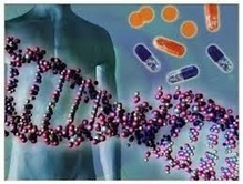 Scientists Identify 11 New Genetic Areas that Contribute to Alzheimer's Disease   Alzheimer's Reading Room   Alzheimer's Disease   Scoop.it