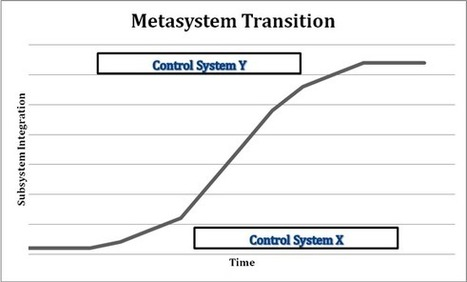 Human Metasystem Transition (HMST) Theory | Global Brain | Scoop.it