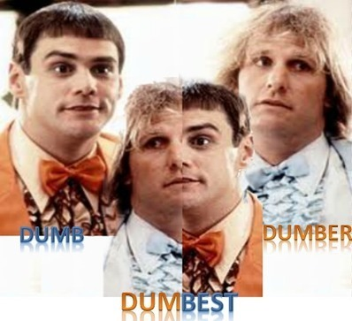 The Dumb, Dumber and Dumbest Signs of Catastrophic Blogging Syndrome!   SEO Labs   Scoop.it