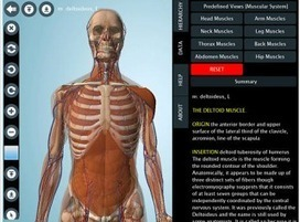 7 Wonderful iPad Apps to Learn about Human Body in 3D ~ Educational Technology and Mobile Learning | APRENDIZAJE | Scoop.it