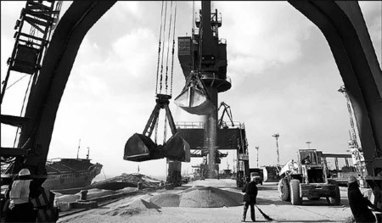 Grain imports grow as eating habits change | Food History & New Markets | Scoop.it