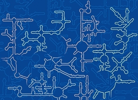 A cellular puzzle: The weird and wonderful architecture of RNA | Amazing Science | Scoop.it